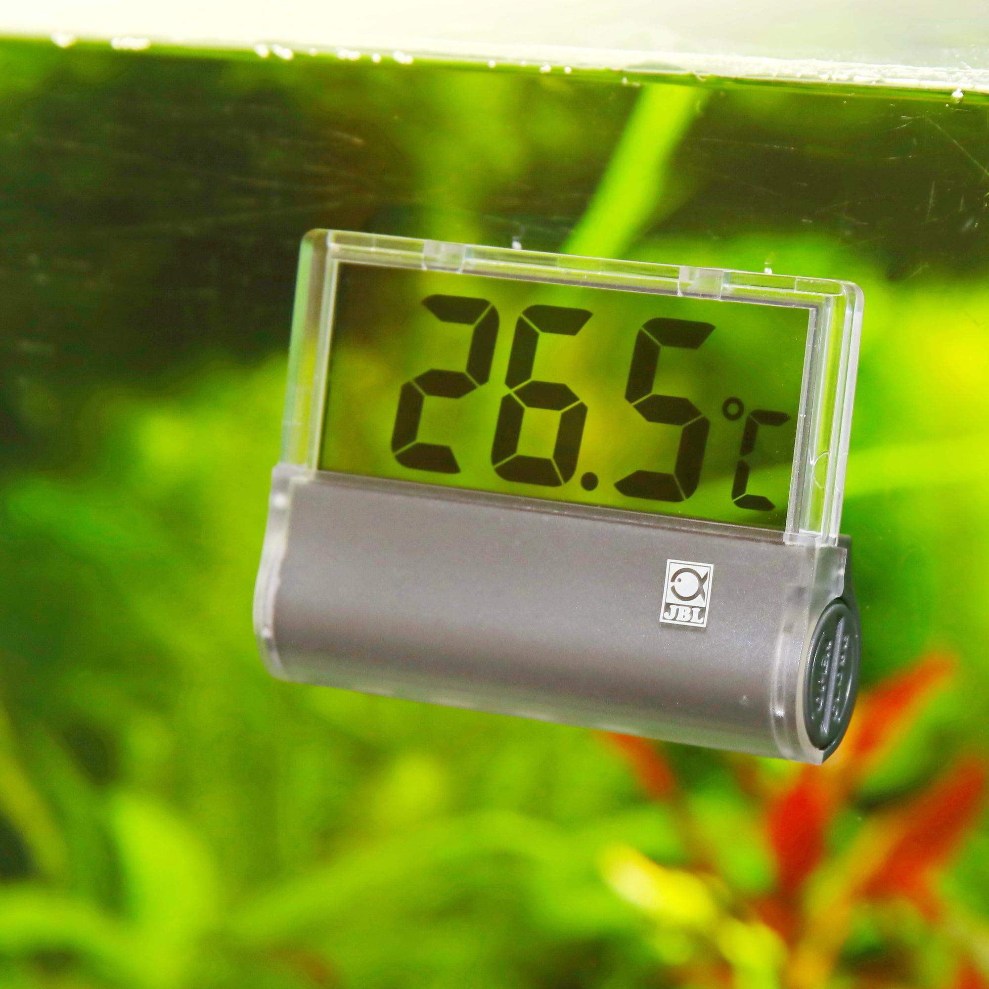 termometr akwariowy